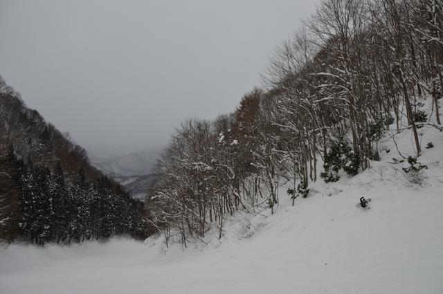 20170112162558.JPG